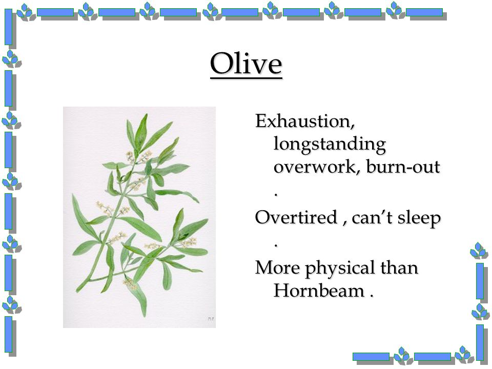 Olive Exhaustion, longstanding overwork, burn-out .