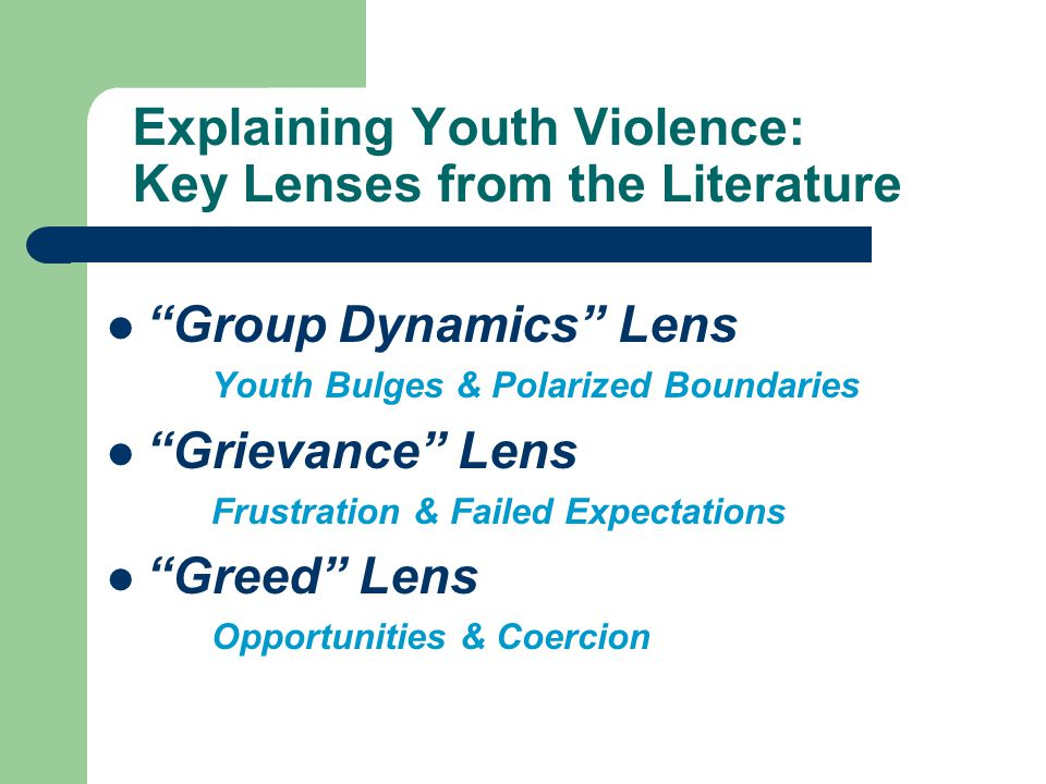 Explaining Youth Violence: Key Lenses from the Literature