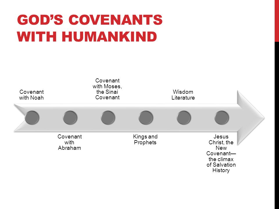 God's Covenants with Humankind