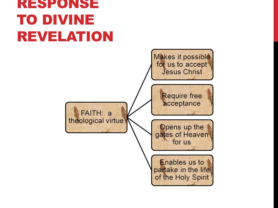 response essay to revelation An exegetical examination of chapter twenty one in revelation also supported by carson who claims that creation's response to god's coming would.