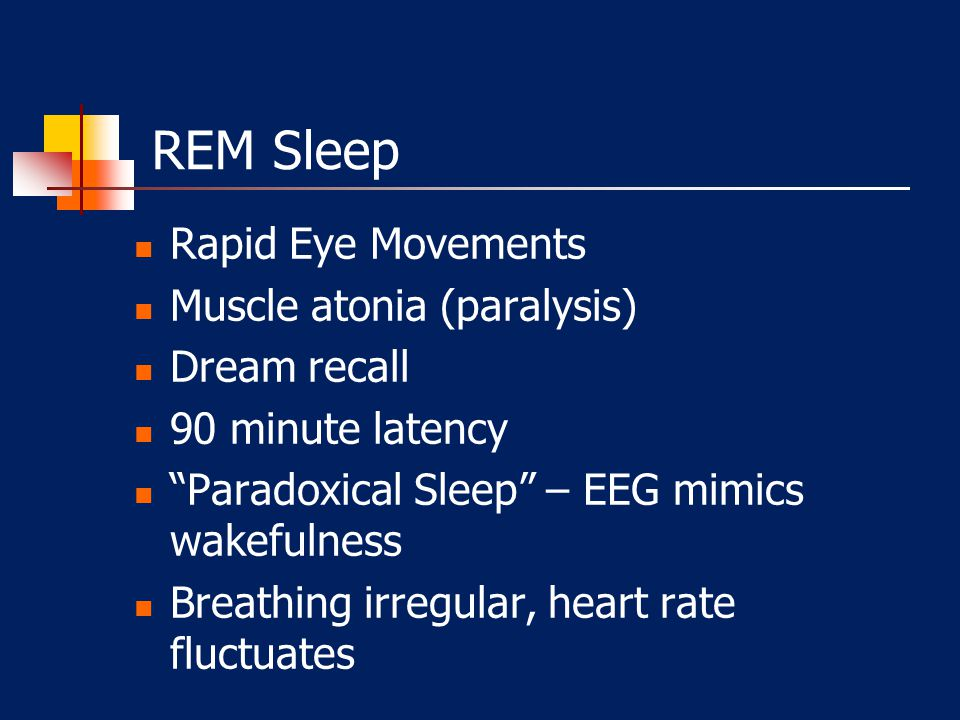 REM Sleep Rapid Eye Movements Muscle atonia (paralysis) Dream recall