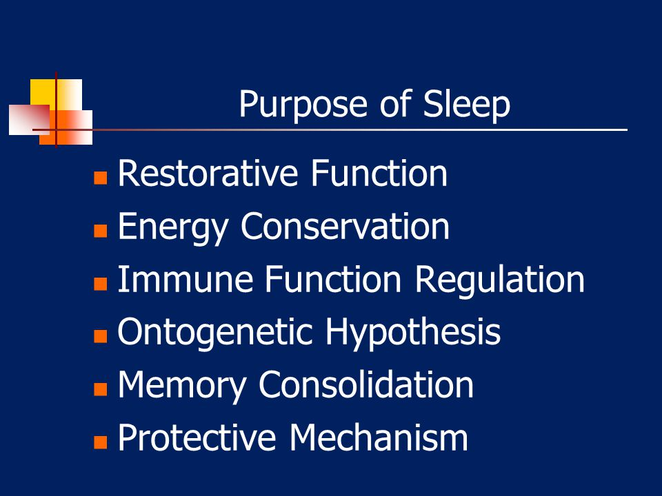 Purpose of Sleep Restorative Function. Energy Conservation. Immune Function Regulation. Ontogenetic Hypothesis.