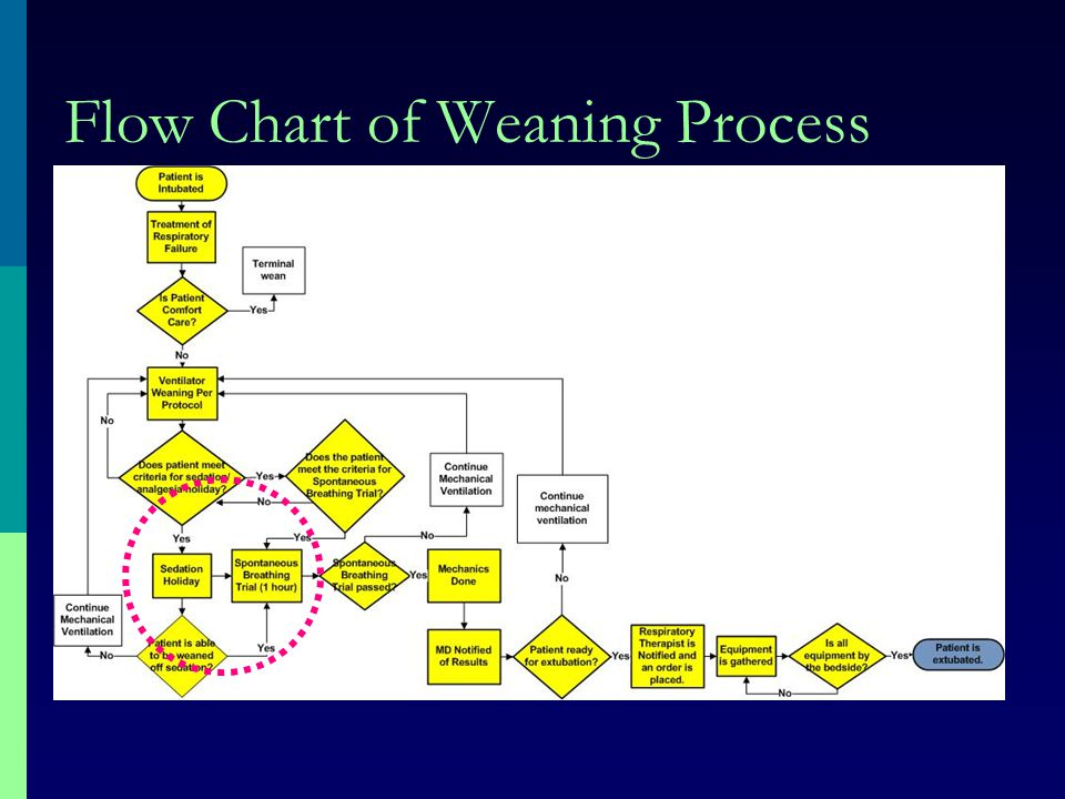 Flow Chart of Weaning Process