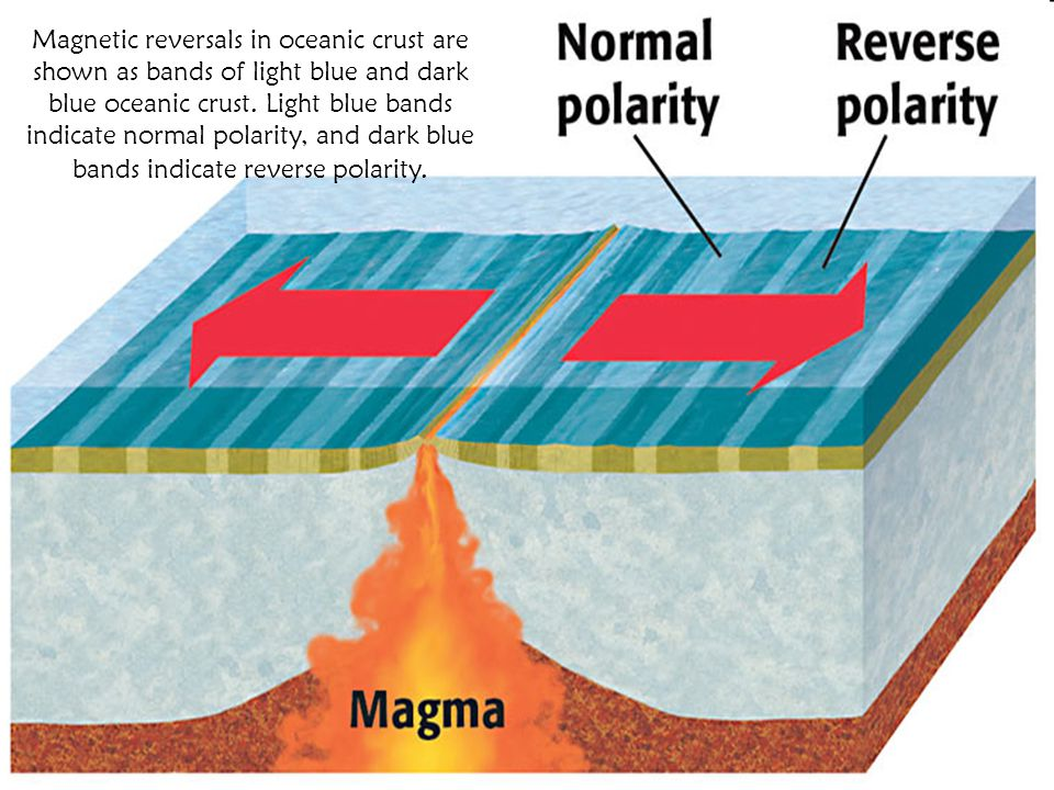 Magnetic reversals in oceanic crust are shown as bands of light blue and dark blue oceanic crust.