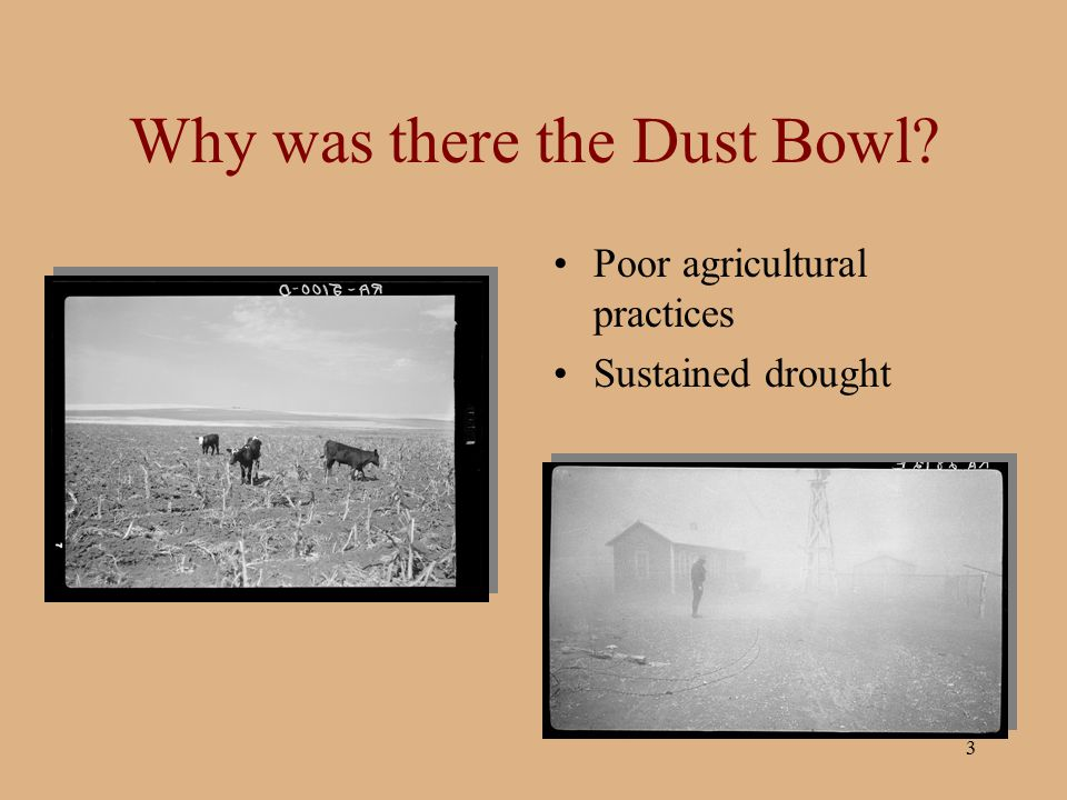 Why was there the Dust Bowl