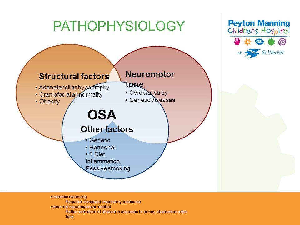 PATHOPHYSIOLOGY OSA Neuromotor tone Structural factors Other factors