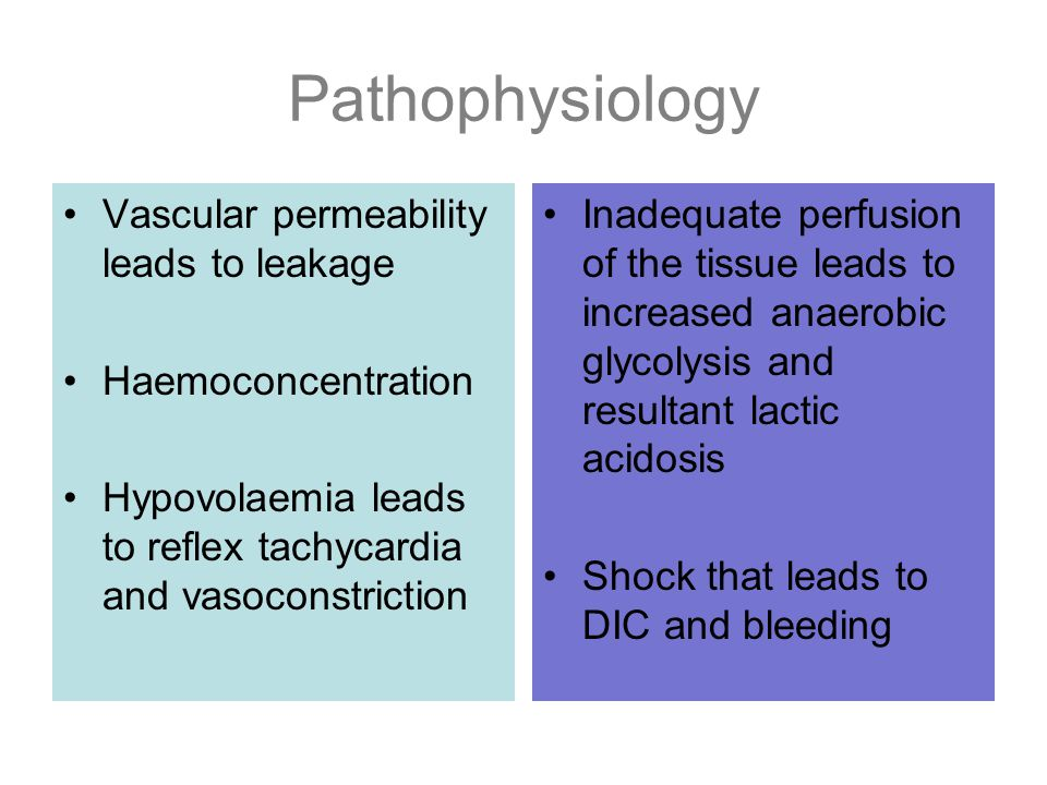 Pathophysiology Vascular permeability leads to leakage
