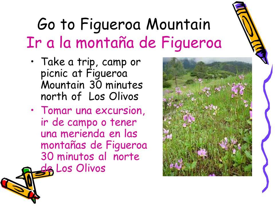Go to Figueroa Mountain Ir a la montaña de Figueroa