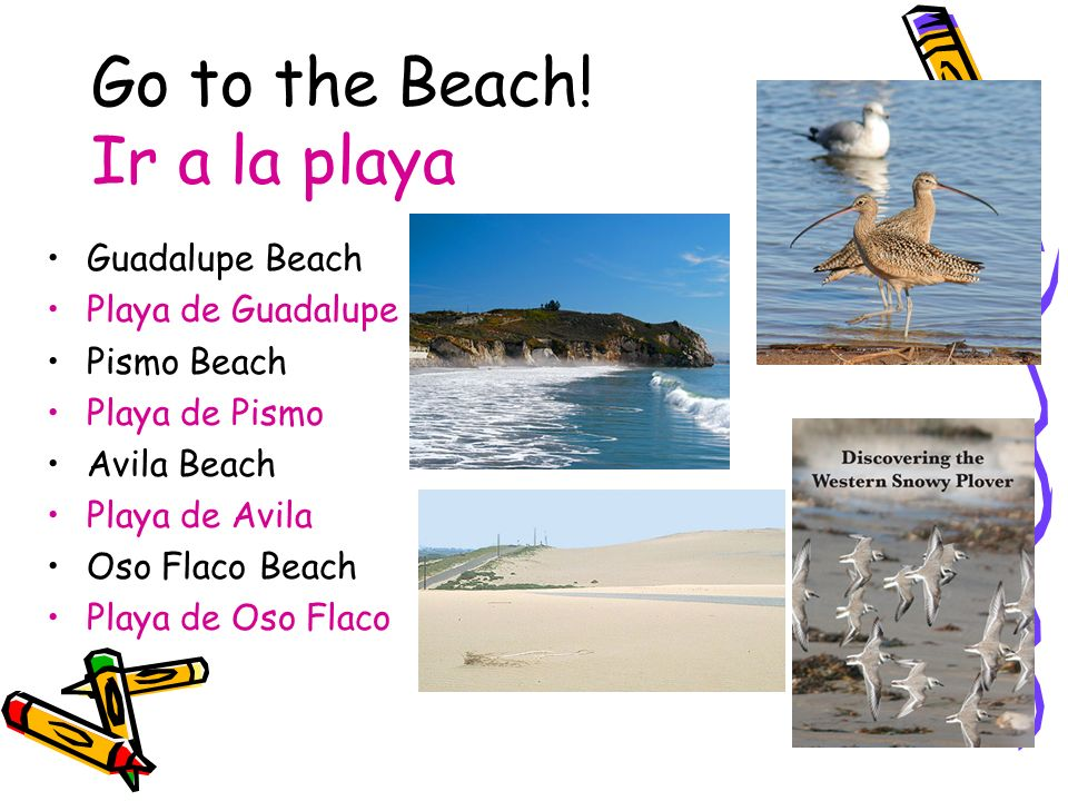 Go to the Beach! Ir a la playa