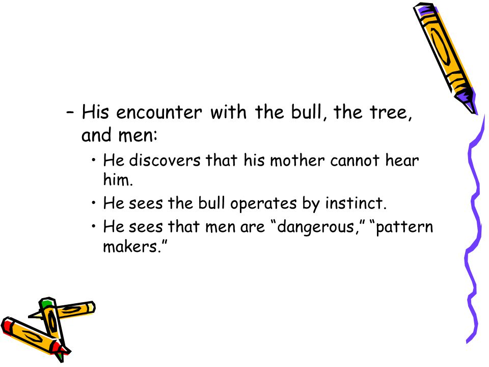 His encounter with the bull, the tree, and men: