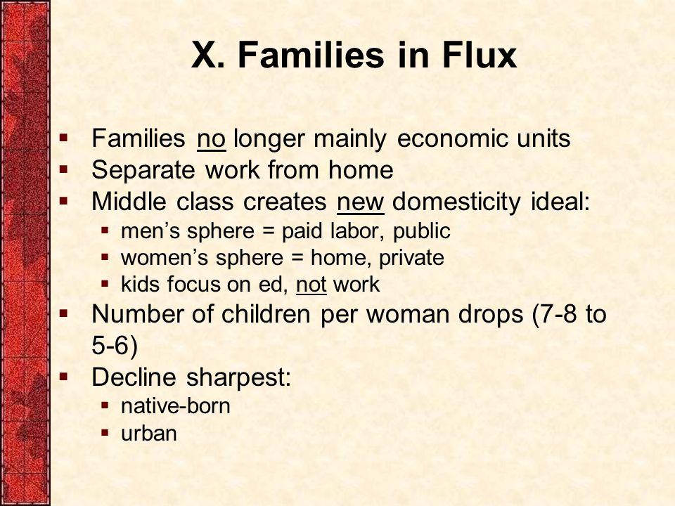 X. Families in Flux Families no longer mainly economic units