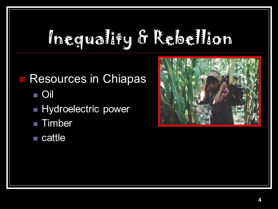 Inequality & Rebellion