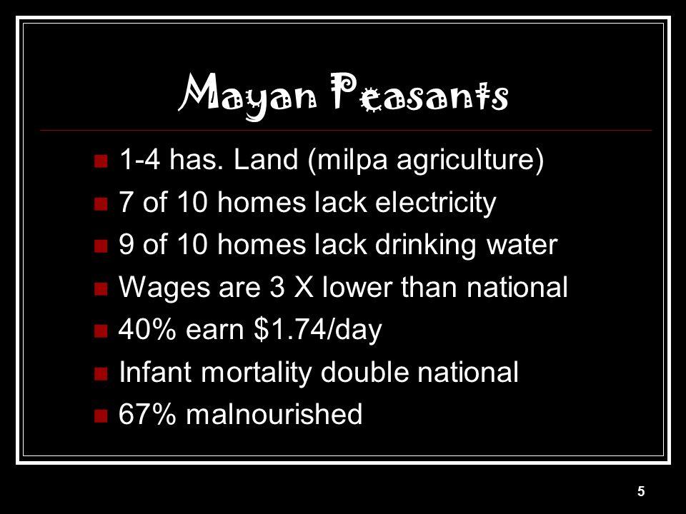 Mayan Peasants 1-4 has. Land (milpa agriculture)
