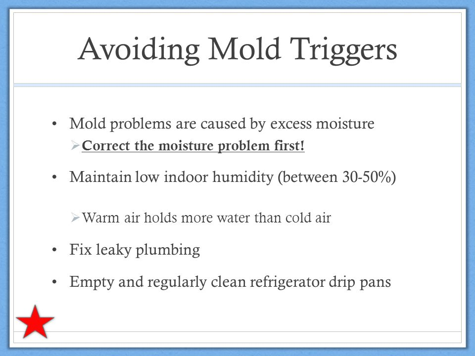 Avoiding Mold Triggers