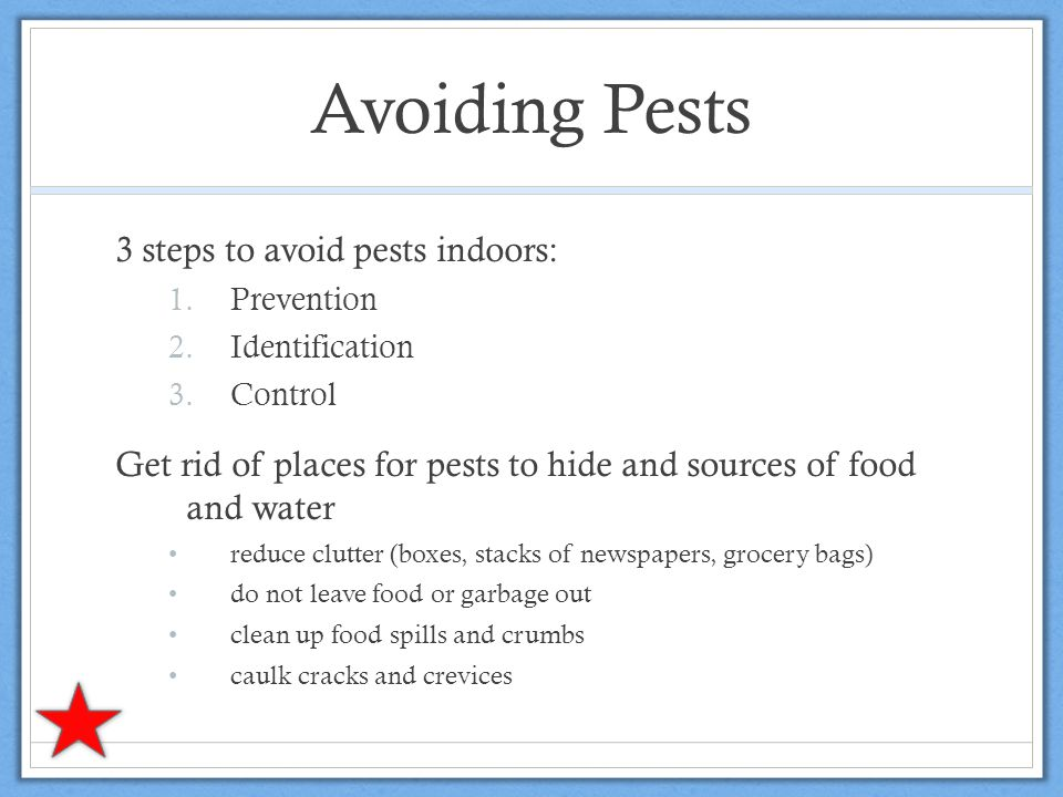 Avoiding Pests 3 steps to avoid pests indoors: