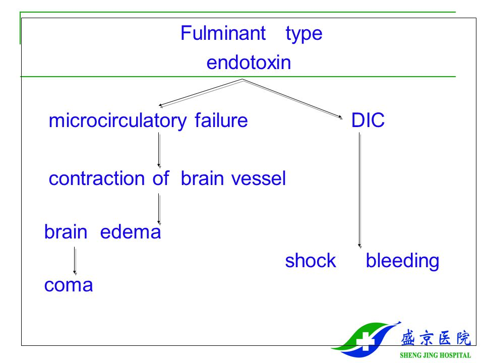 Fulminant type endotoxin. microcirculatory failure DIC. contraction of brain vessel.