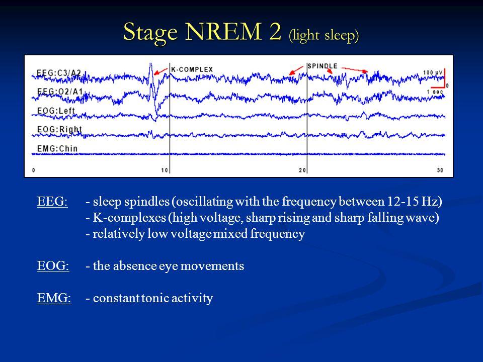 Stage NREM 2 (light sleep)