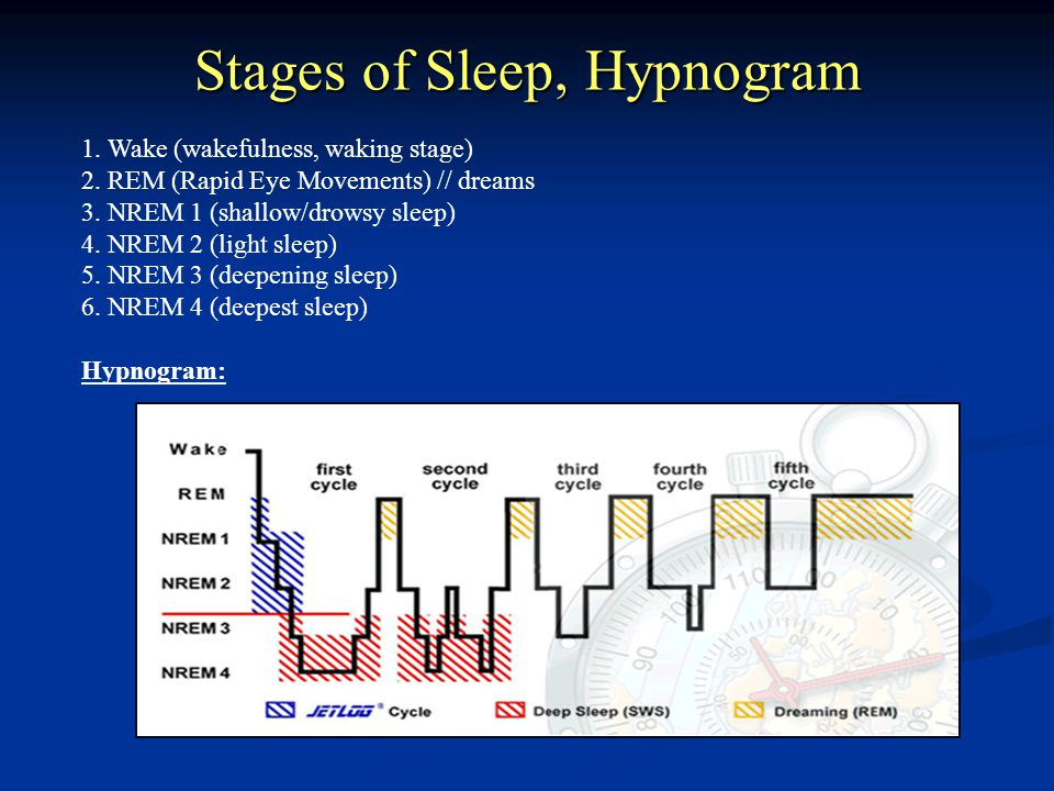 Stages of Sleep, Hypnogram