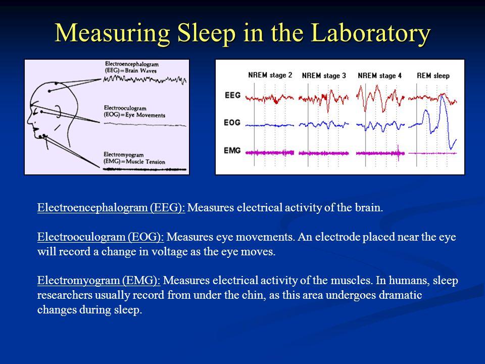 Measuring Sleep in the Laboratory