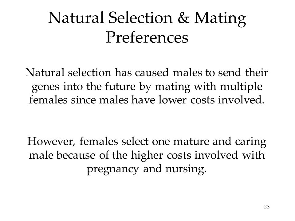 Natural Selection & Mating Preferences