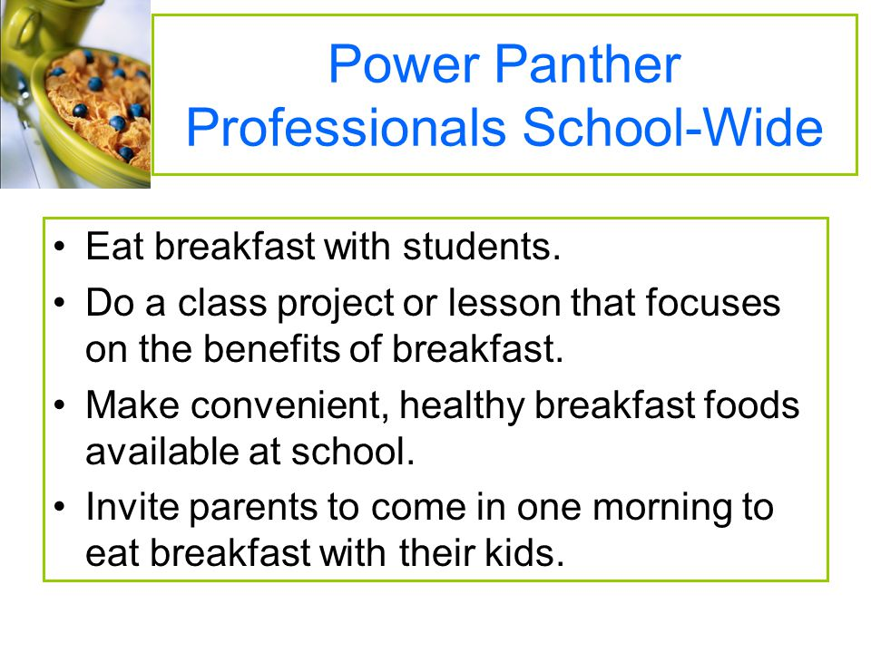 Power Panther Professionals School-Wide
