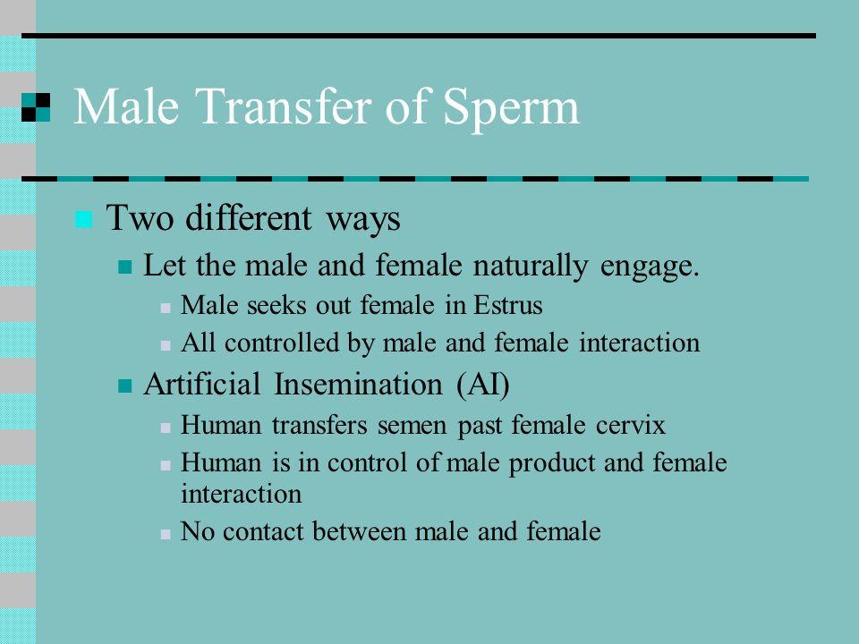 Male Transfer of Sperm Two different ways