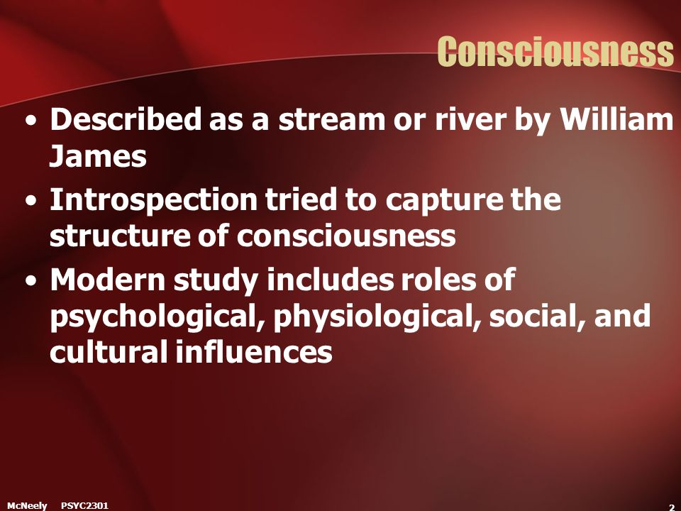 Consciousness Described as a stream or river by William James