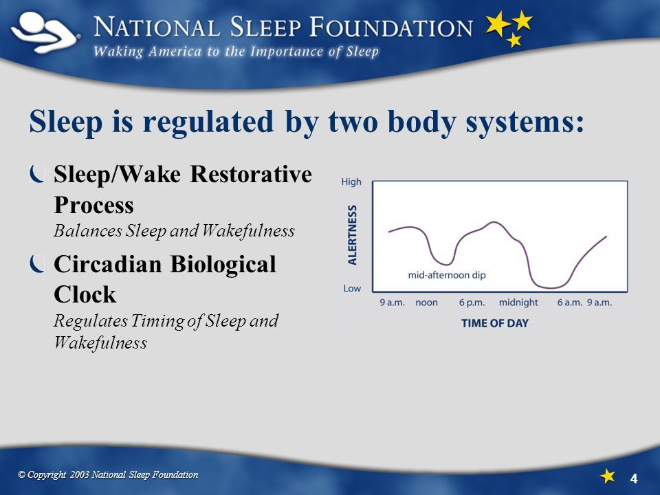 Sleep is regulated by two body systems: