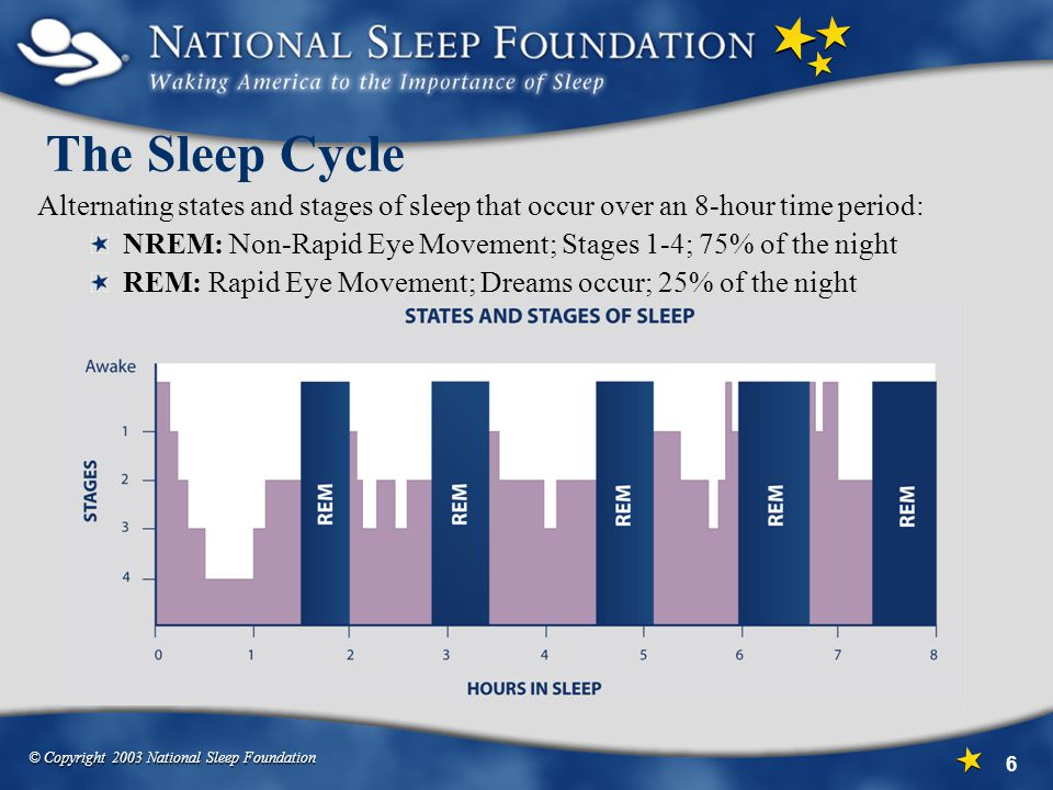 The Sleep Cycle Alternating states and stages of sleep that occur over an 8-hour time period: