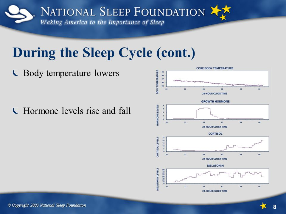 During the Sleep Cycle (cont.)