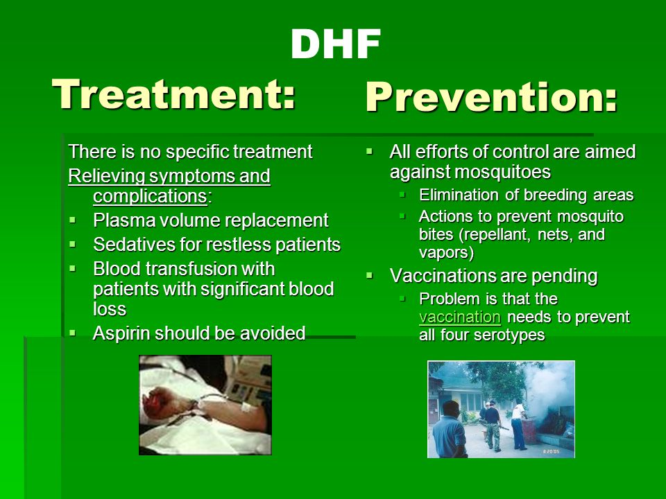 DHF Treatment: Prevention: There is no specific treatment