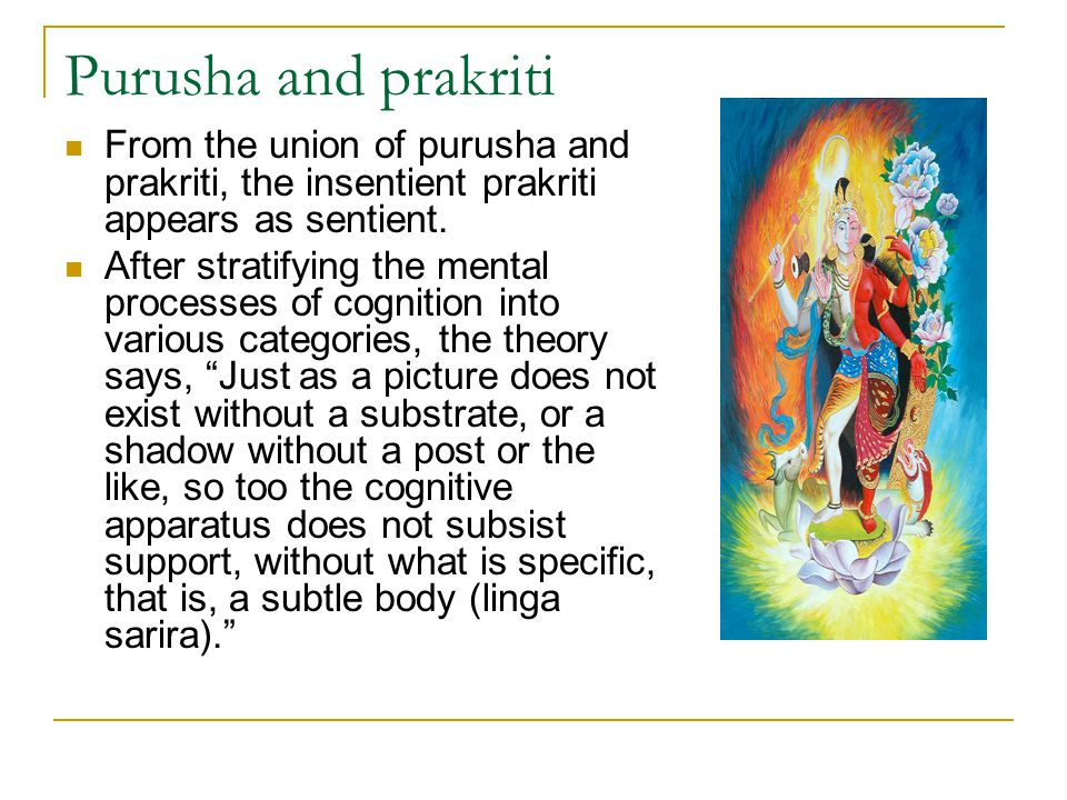 Purusha and prakriti From the union of purusha and prakriti, the insentient prakriti appears as sentient.