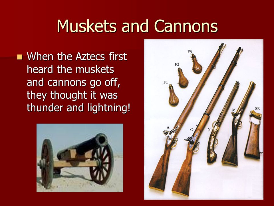 Muskets and Cannons When the Aztecs first heard the muskets and cannons go off, they thought it was thunder and lightning!