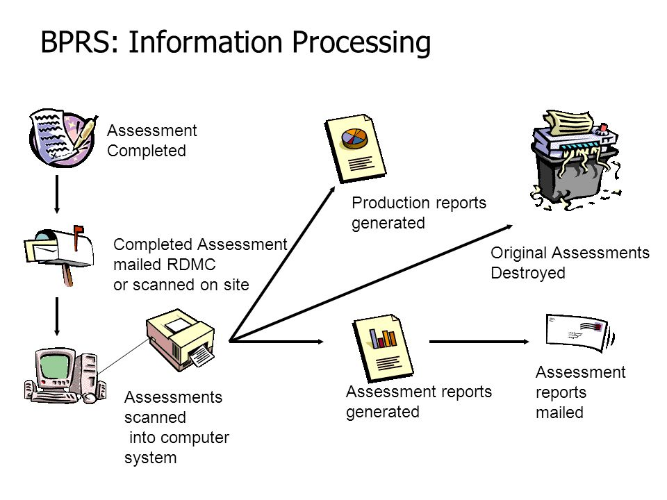 BPRS: Information Processing