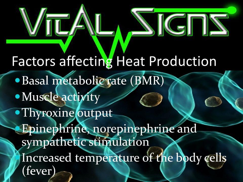 Factors affecting Heat Production