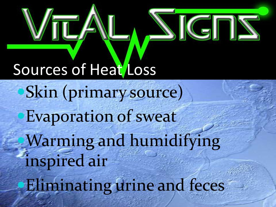 Sources of Heat Loss Skin (primary source) Evaporation of sweat