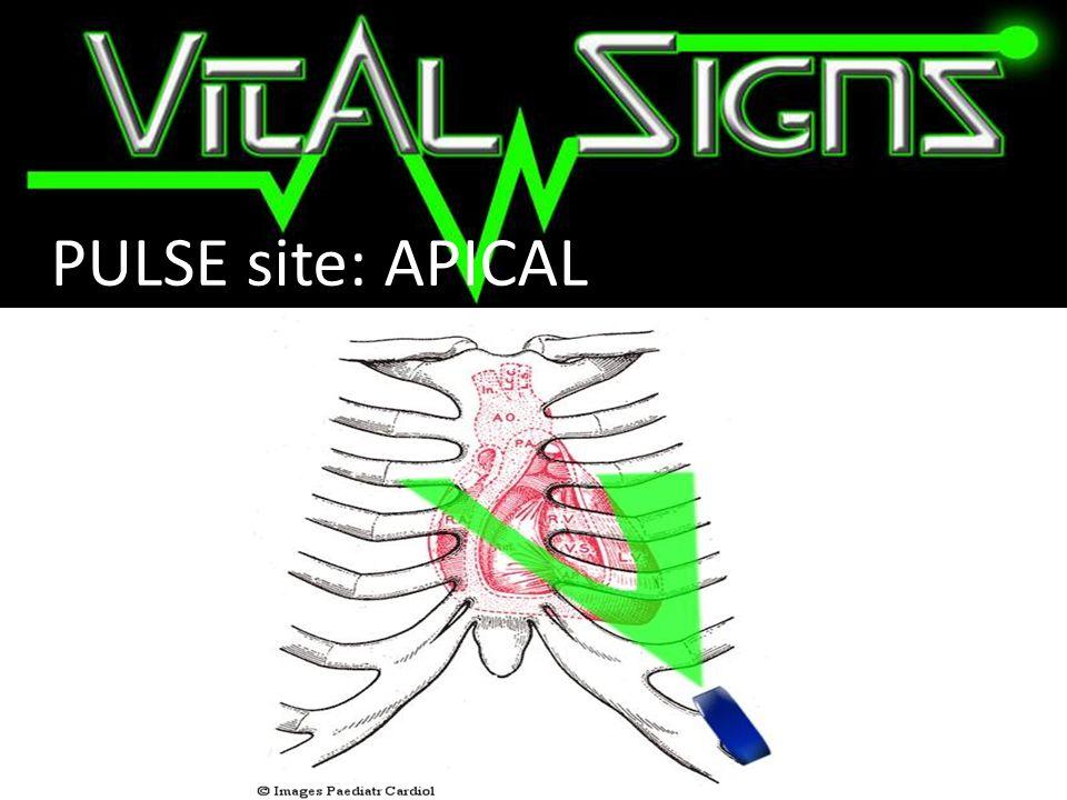 PULSE site: APICAL