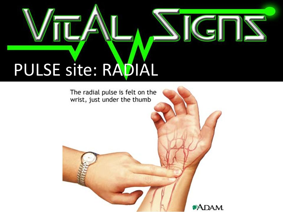 PULSE site: RADIAL