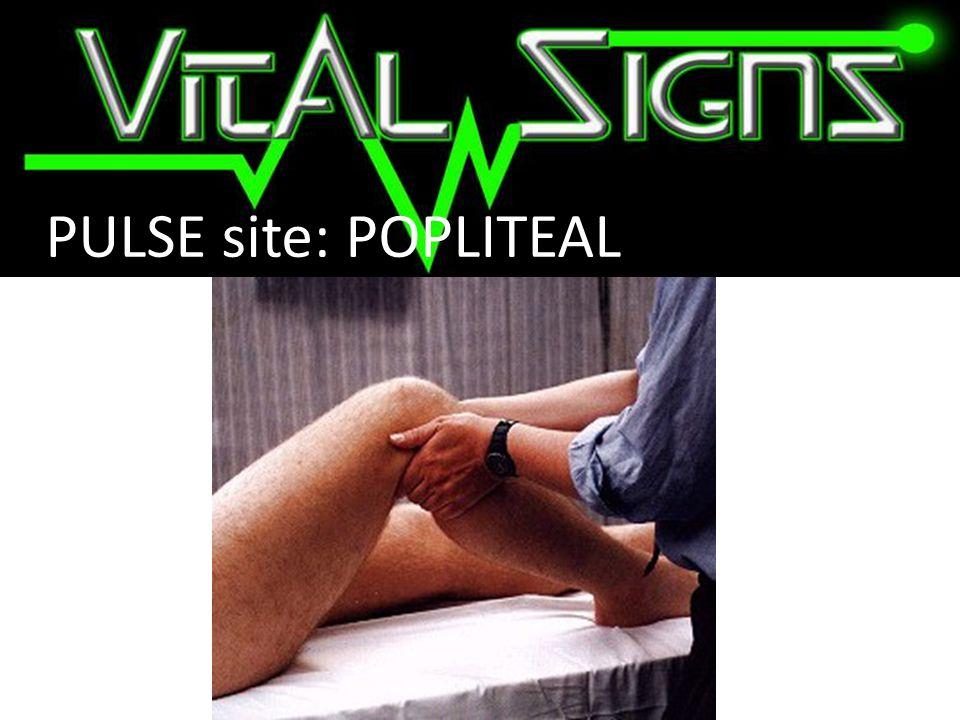 PULSE site: POPLITEAL