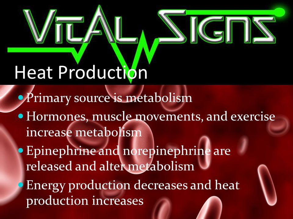 Heat Production Primary source is metabolism