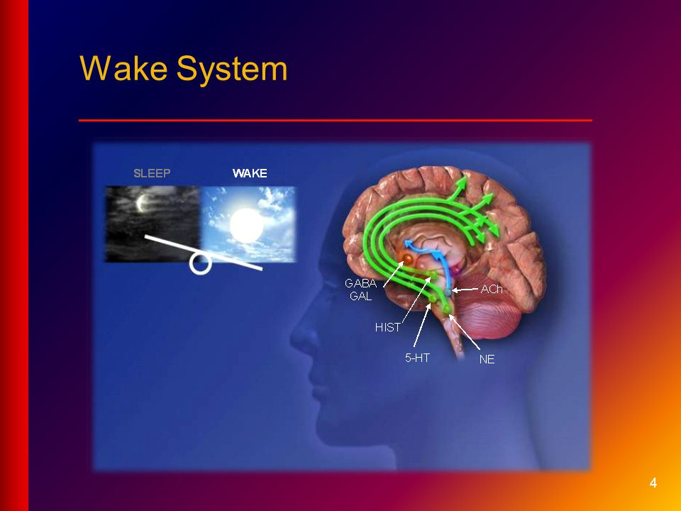 Wake System ___________________________