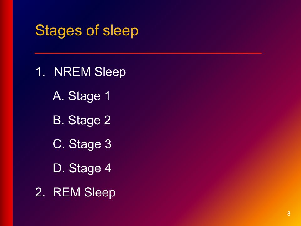 Stages of sleep ___________________________