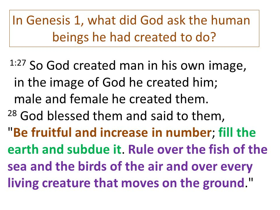 beings he had created to do
