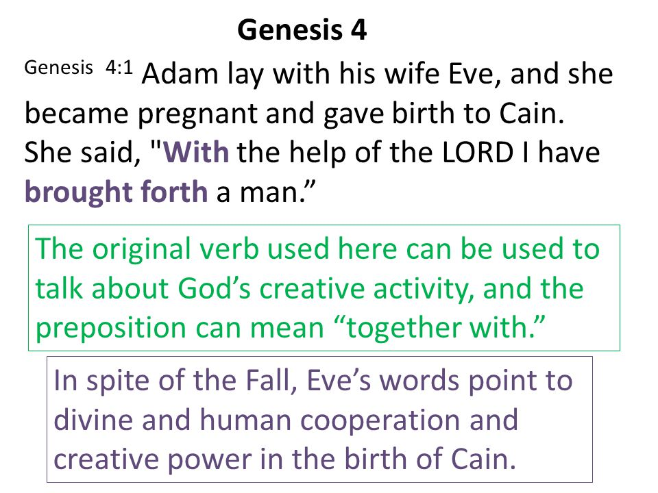 Genesis 4 Genesis 4:1 Adam lay with his wife Eve, and she. became pregnant and gave birth to Cain.