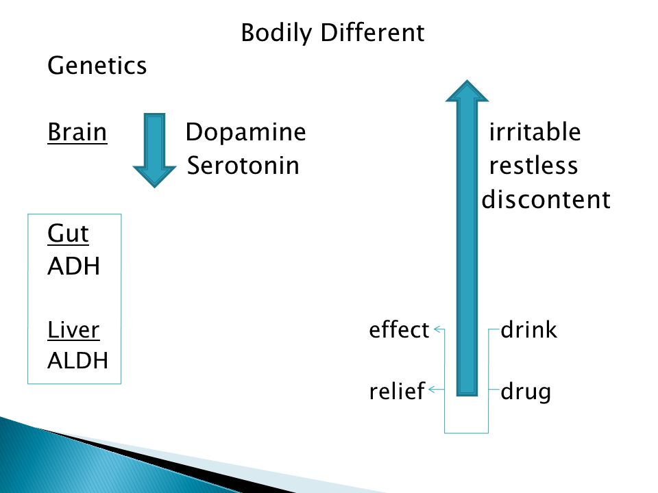 Brain Dopamine irritable Serotonin restless discontent Gut ADH
