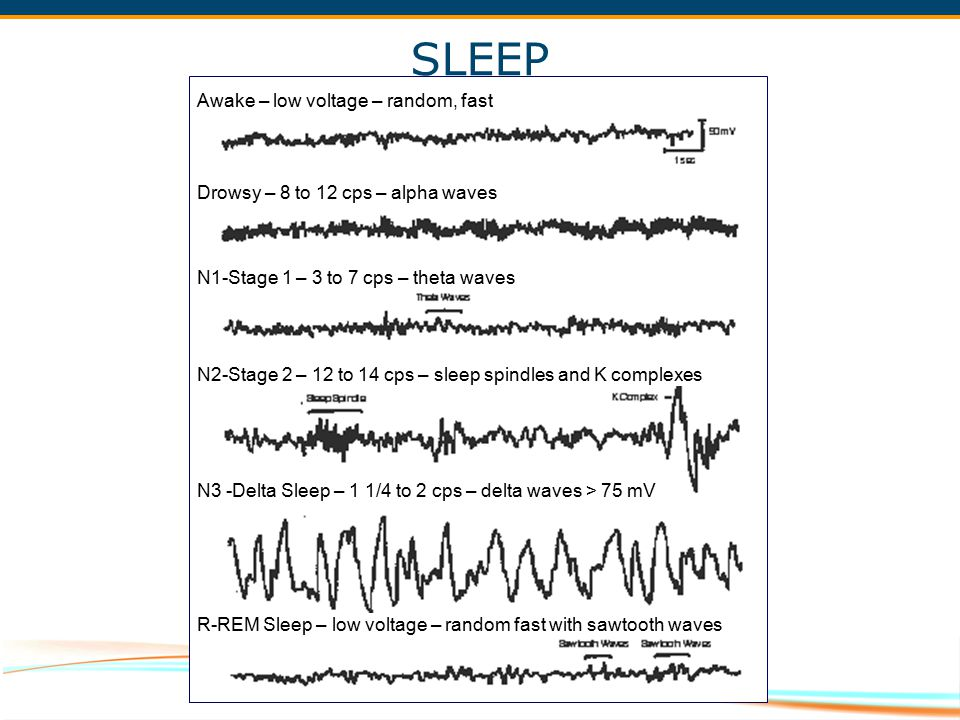SLEEP Awake – low voltage – random, fast