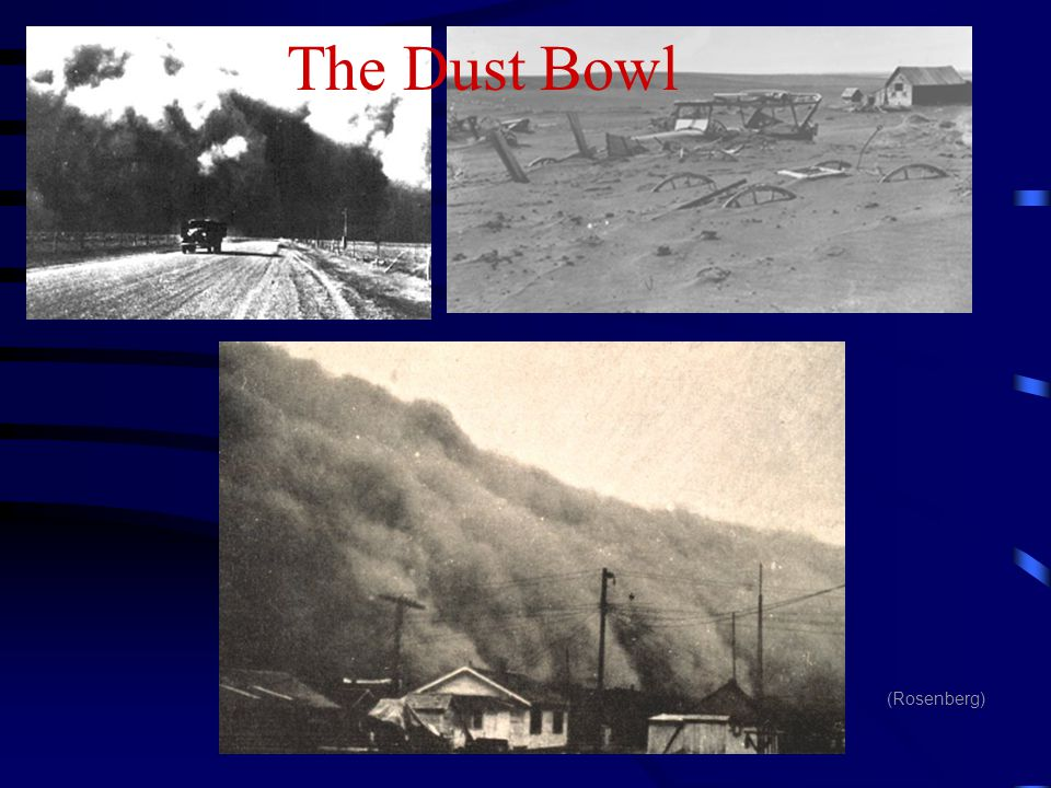 The Dust Bowl (Rosenberg)