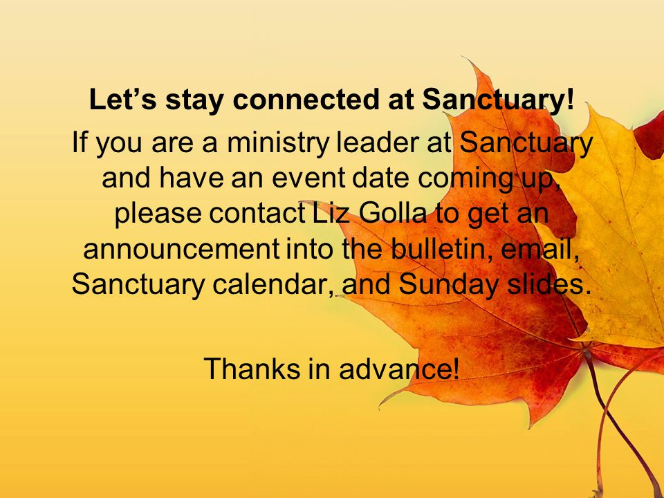 Let's stay connected at Sanctuary!