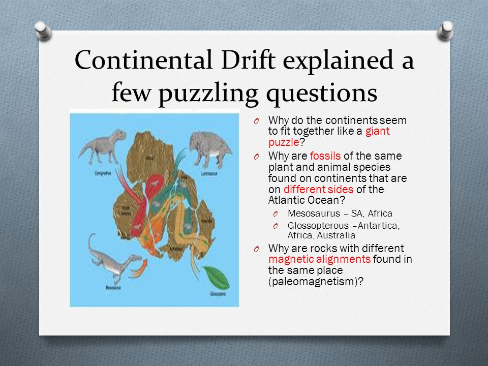 Continental Drift explained a few puzzling questions
