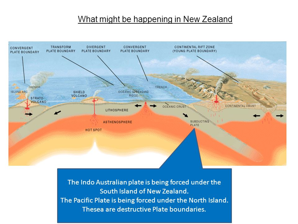 What might be happening in New Zealand